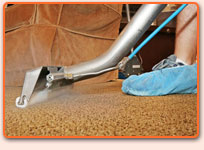 Home Carpet Steam Cleaning